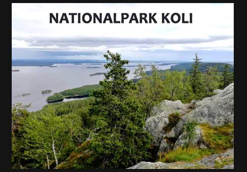 nationalparkkoli