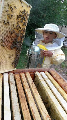 beekeeper son